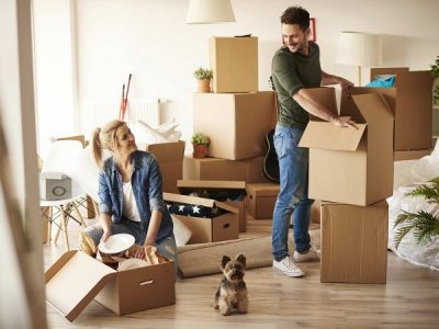 What To Do With Your Pets When Moving House