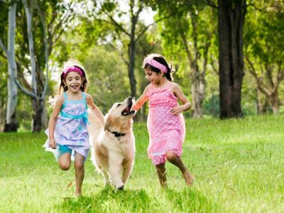 Pet Friendly Family Activities in Brisbane