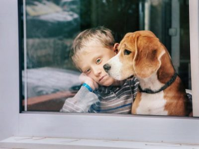 Can Dogs Sense a Death in the Family?
