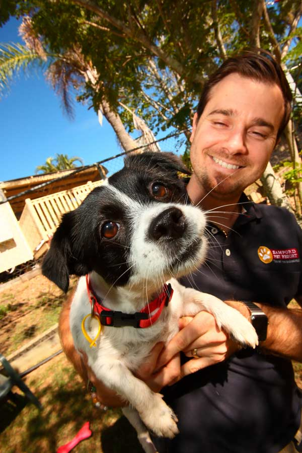 Features to Look for in a Quality Pet Resort