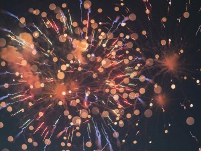 Fireworks on NYE and how to combat your pet's loud noise anxiety